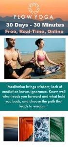 Vinyasa Flow Yoga for Beginners – 30 Days – 30 Minutes