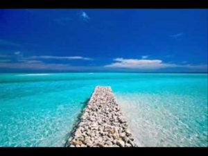 Progressive Muscle Relaxation Guided Meditation